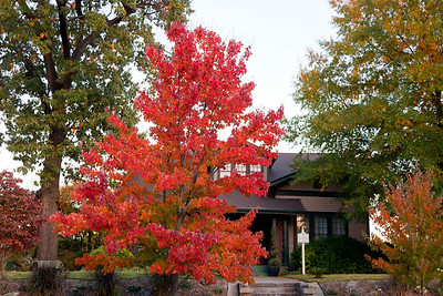 Fall in Little Rock, Governor's Mansion Neighborhoo