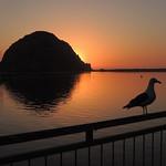 Morro Rock Sunset   Morro Bay, CA