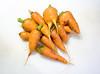 CSA Harvest / Carrots