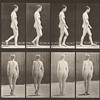 Nude woman walking (Animal Locomotion, 1887, plate 15)