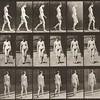 Nude woman walking (Animal Locomotion, 1887, plate 13)
