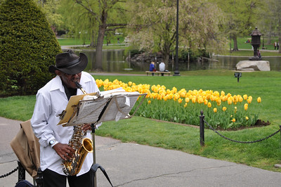 Jazz in Boston Gardens
