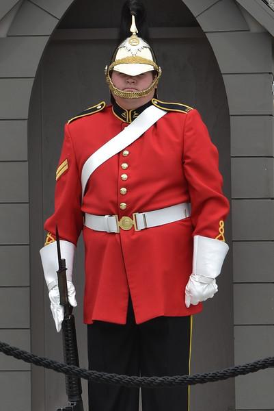 Guard at the War Memorial in Ottawa