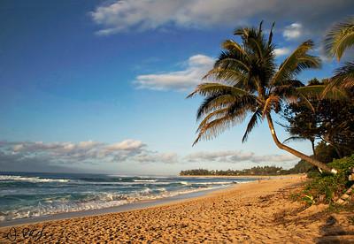 Sunset Beach, North Shore - Oahu, Hawaii