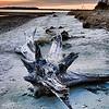 Folly Beach 004