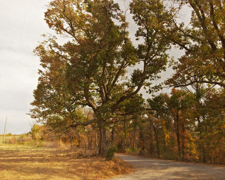 T-Road, Crittendon County,  Kentucky