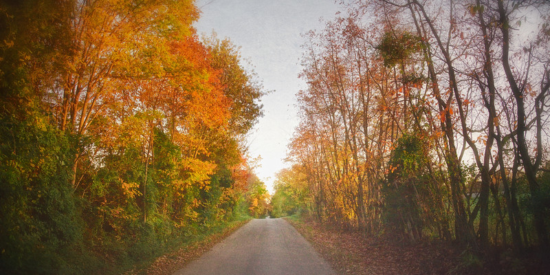 The Road Back To Town