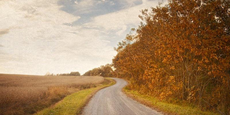 Country Road Curves in Fall