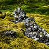 Snæfellsnes Peninsula moss field