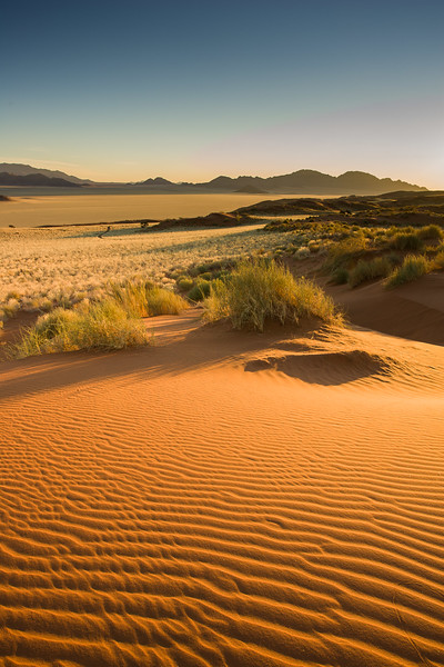Unspoiled sand dune