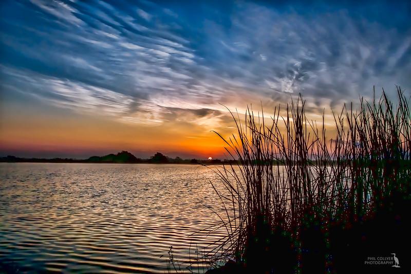 Sweet Bay Pond