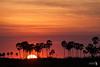 Sunrise,  Kwando lagoon