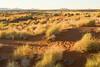 NamibRand Reserve