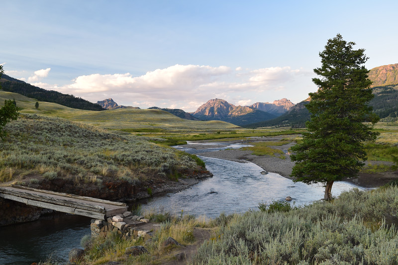 Lamar Valley | Yellowstone National Park