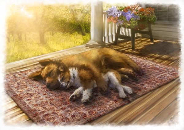 """""""Sunday Snooze"""""""