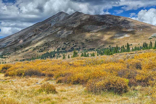Top of Boreas Pass