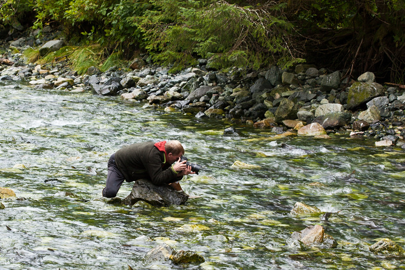 """So many in the stream, that Dan Evans, <a href=""""http://www.alaskadanevans.com/dev/"""">http://www.alaskadanevans.com/dev/</a>, our local guide and now friend, got in with the salmon."""