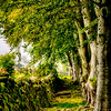 Inside the walls of CLAVA CAIRNS Scotland