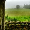 Landscape around CLAVA CAIRNS, Scotland