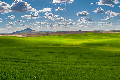 Steptoe Butte on Horizon