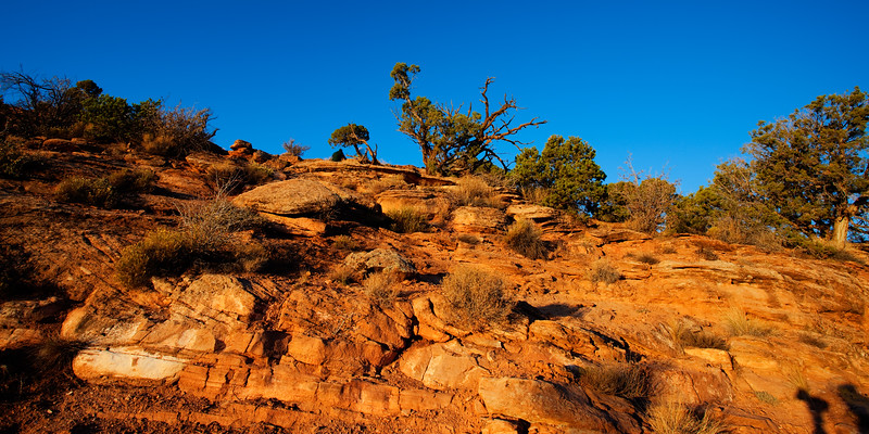 Morning Sun Colorado National Monument 7:32 AM