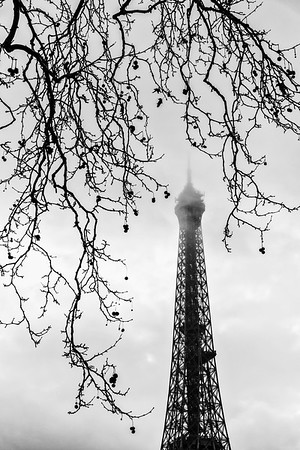 Eiffel Tower in Autumn.