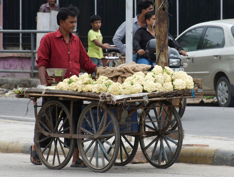 Cauliflower Vendor, Jaipur