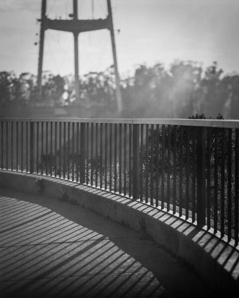 Ilford Delta 100 120mm Film / Hasselblad 500cm