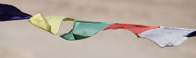 Prayer Flags at Thiksey Monastery