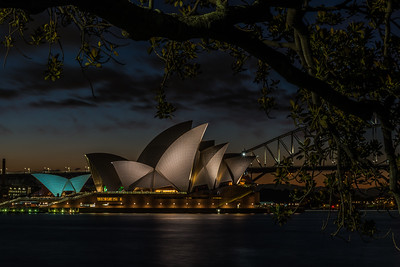 View of Sydney Opera House from Royal Botanic Gardens.