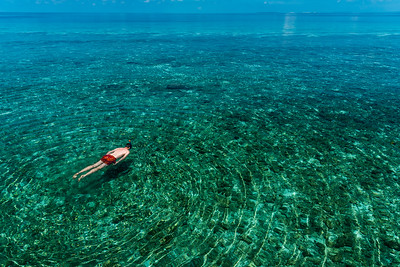 Snorkelling in the Maldives.