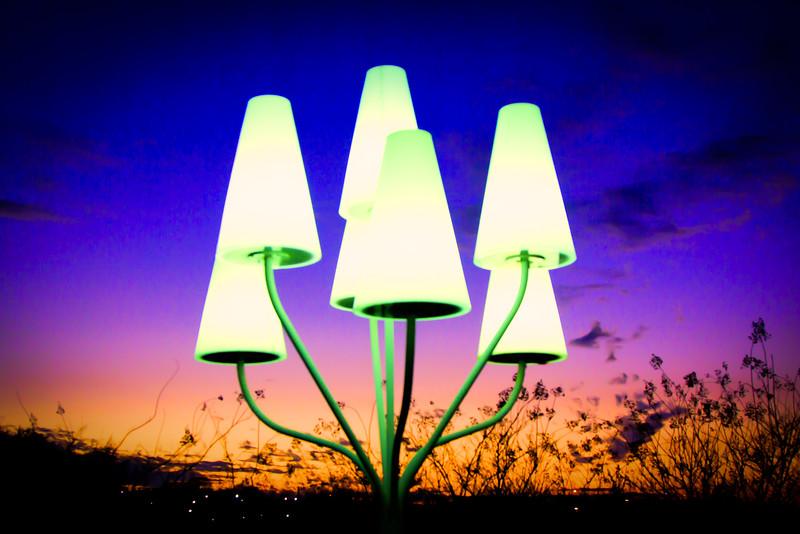 Picnic Lights, Cesar Chaves Blvd., Lady Bird Lake, Austin Texas #3