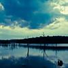 Inks Lake State Park 2015 #9 Inks Lake State Park 2015 #9