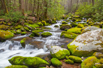 Roaring Fork River, Great Smoky Mountains National Park.  This photo appears in the Google  Chromecast screensaver catalog