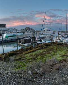 20120623.  View from north side of Long Wharf Boston at low tide.