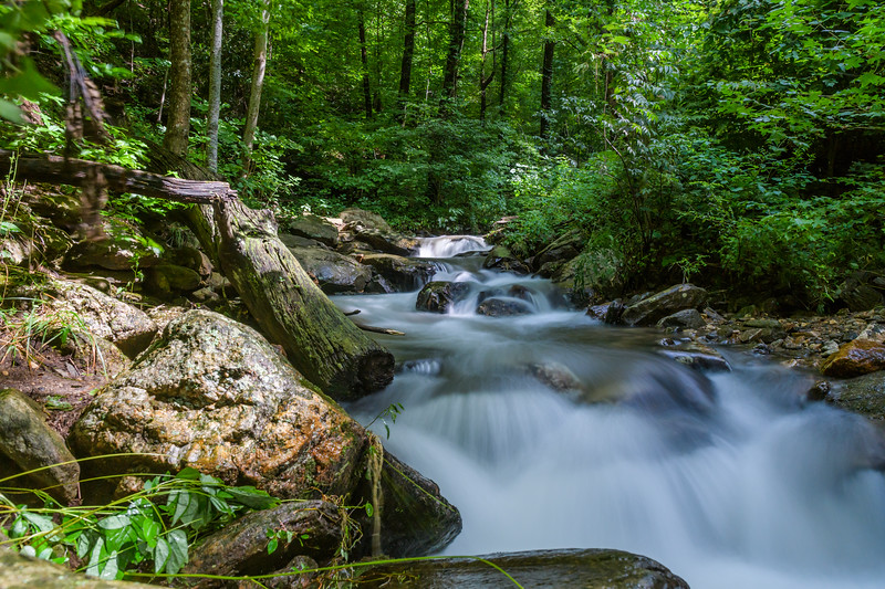 Soft cascade through the Appalachian woods