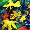 Leaves in water #2