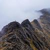 ridge wanderer