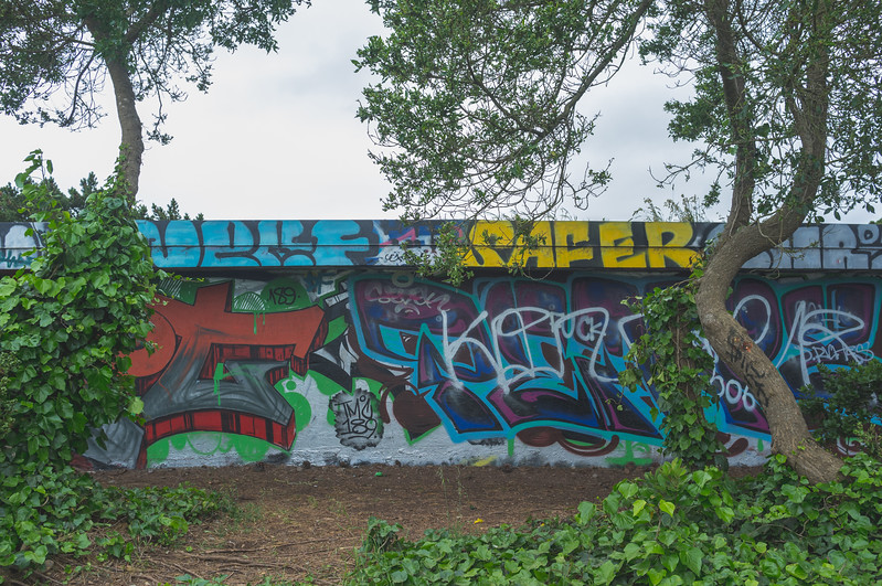 Graffiti Beyond the Pines