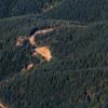 Winding logging road