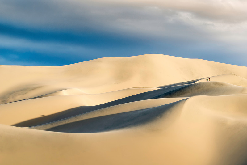 David J Crewe - Dunes