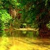 Sabinal River #2