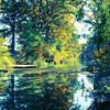Medina River #1