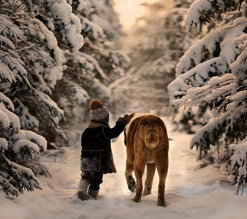Elena Shumilova - Through the snows
