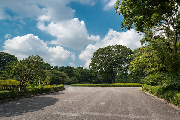 Tokyo Imperial Palace, East Garden