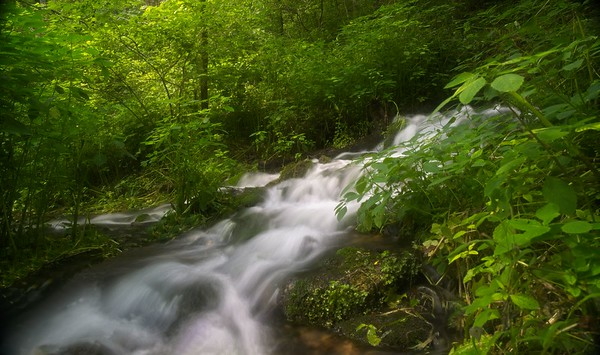 Falls At Turner Spring