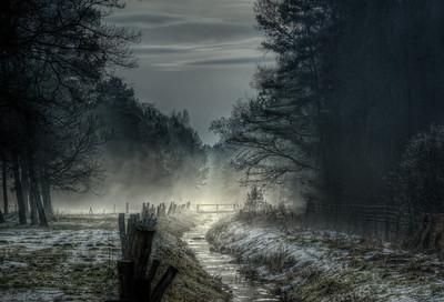 Uli Stein - Fog
