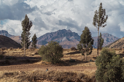 Mountain Peak Framed by Two Trees in Peru