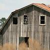 Old Barn_SS2156