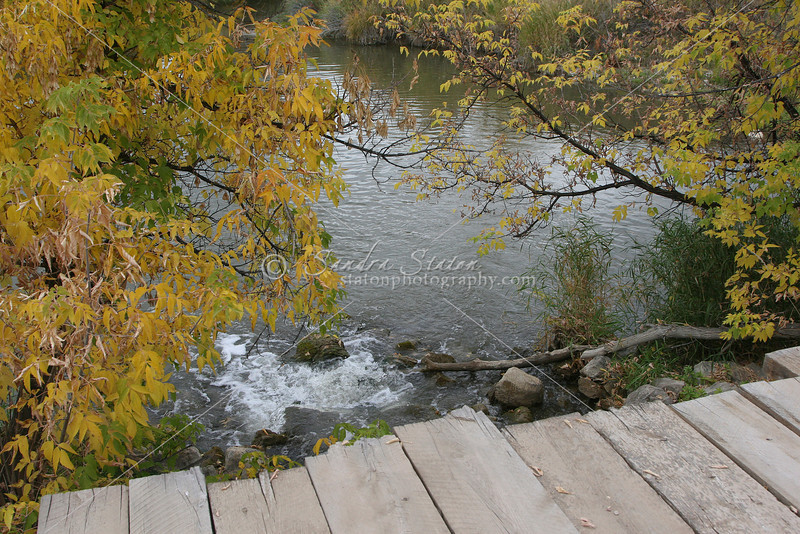 Wooden Bridge_SS4134